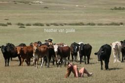 heather hussey americana nude woman cattle photographer