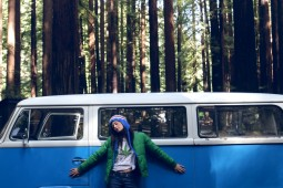 vw bus, vintage, camping, millennial, glamping, redwoods national park, lifestyle camping,heather van gaale, road trip,