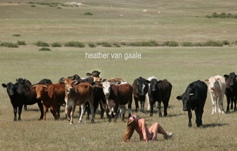 heather hussey americana nude woman cattle photographer