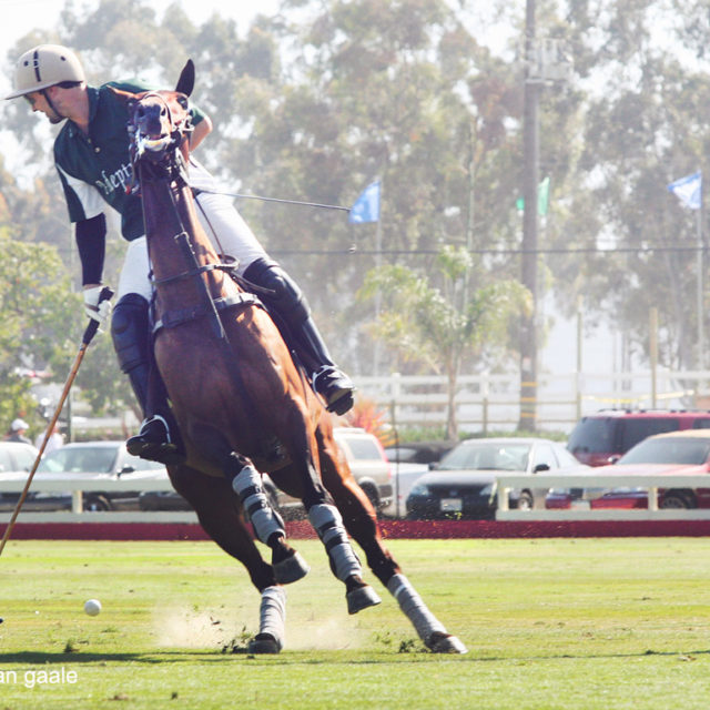 polo player goal horse action shot san diego event photographer