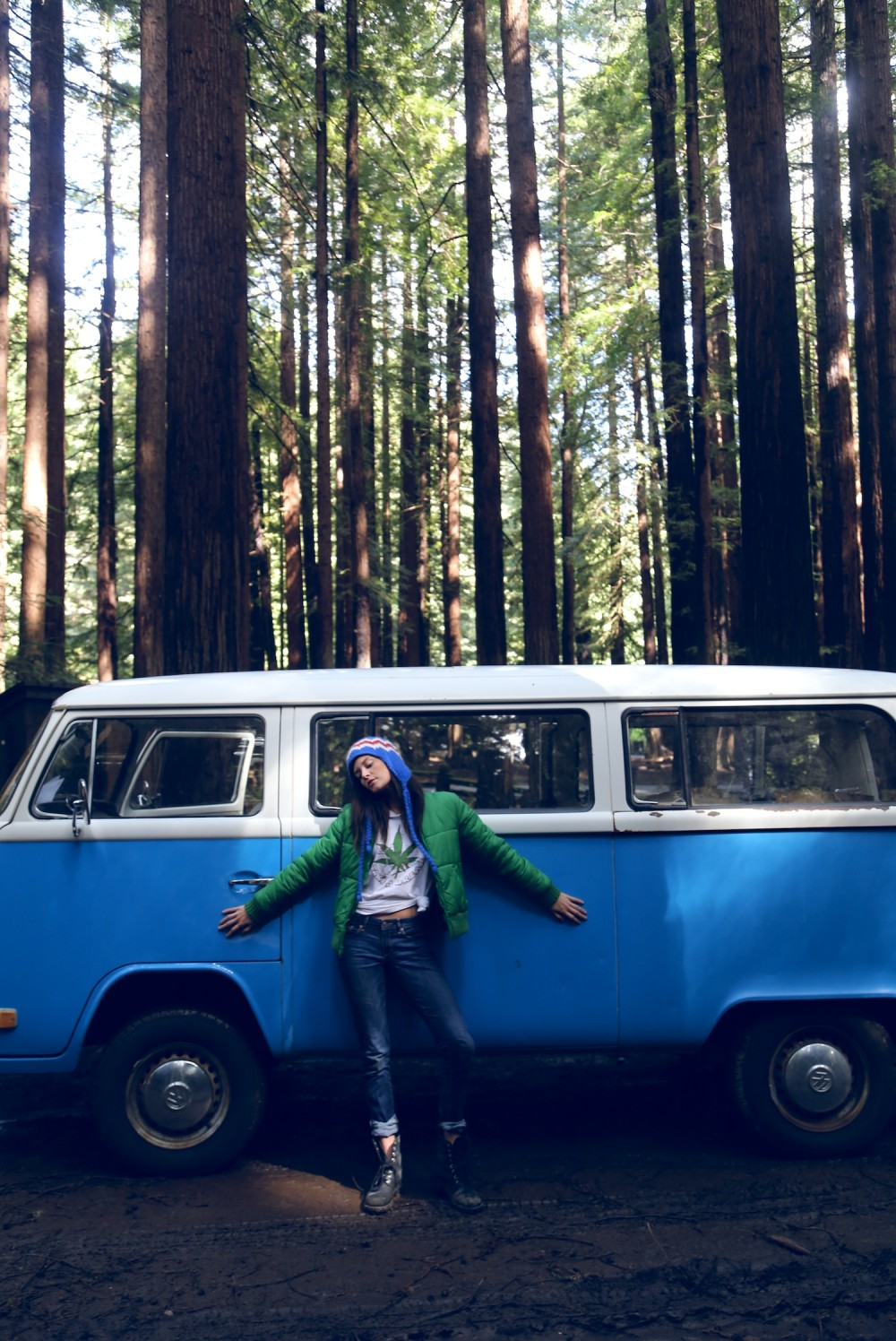 vw bus, vintage, camping, millennial, glamping, redwoods national park, lifestyle camping,heather van gaale, road trip,