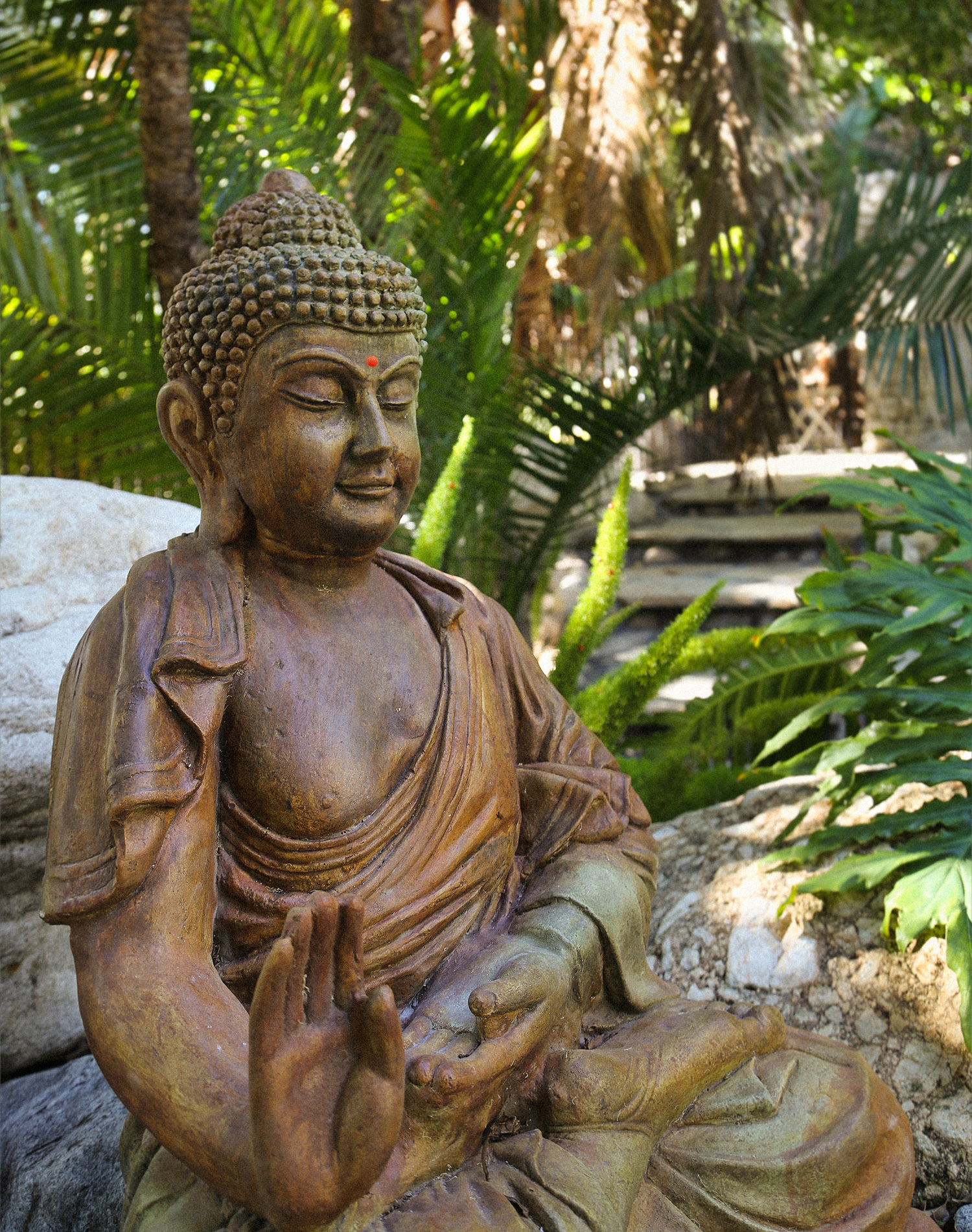 buddha,love,green,statue,tropical,jungle