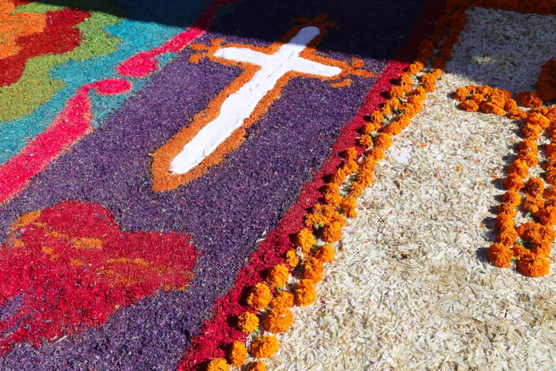 flower petal dia de los muertos celebration tijuana