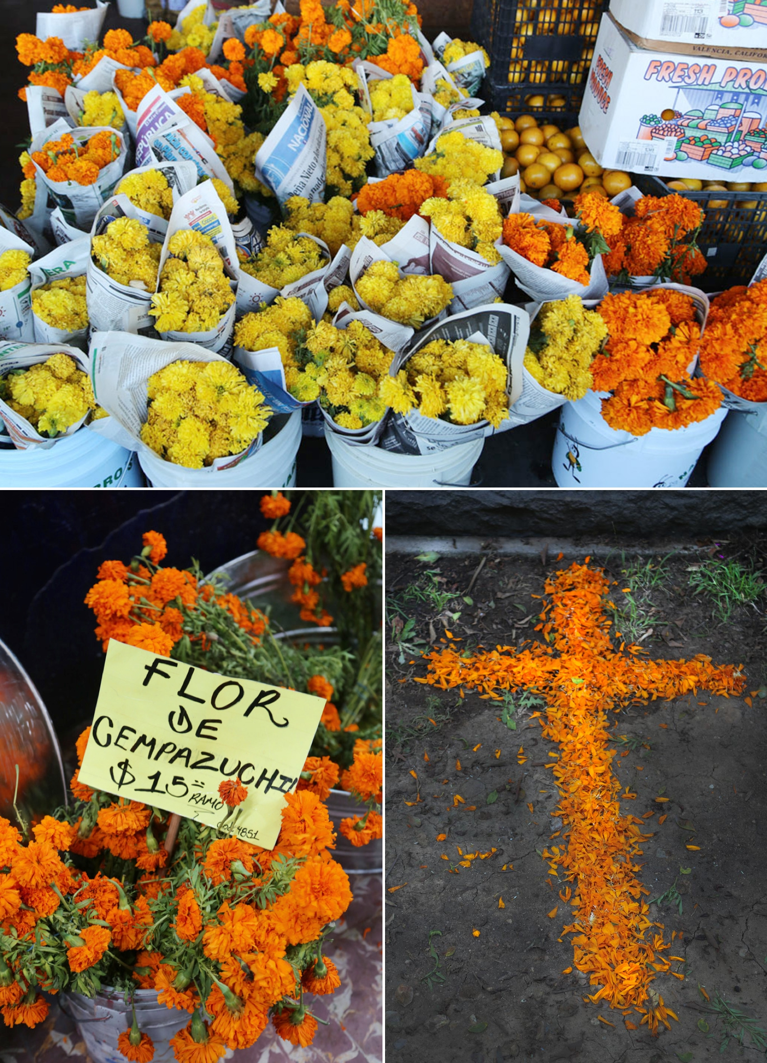 marigolds dia de los muertos fall halloween mexico travell blogger