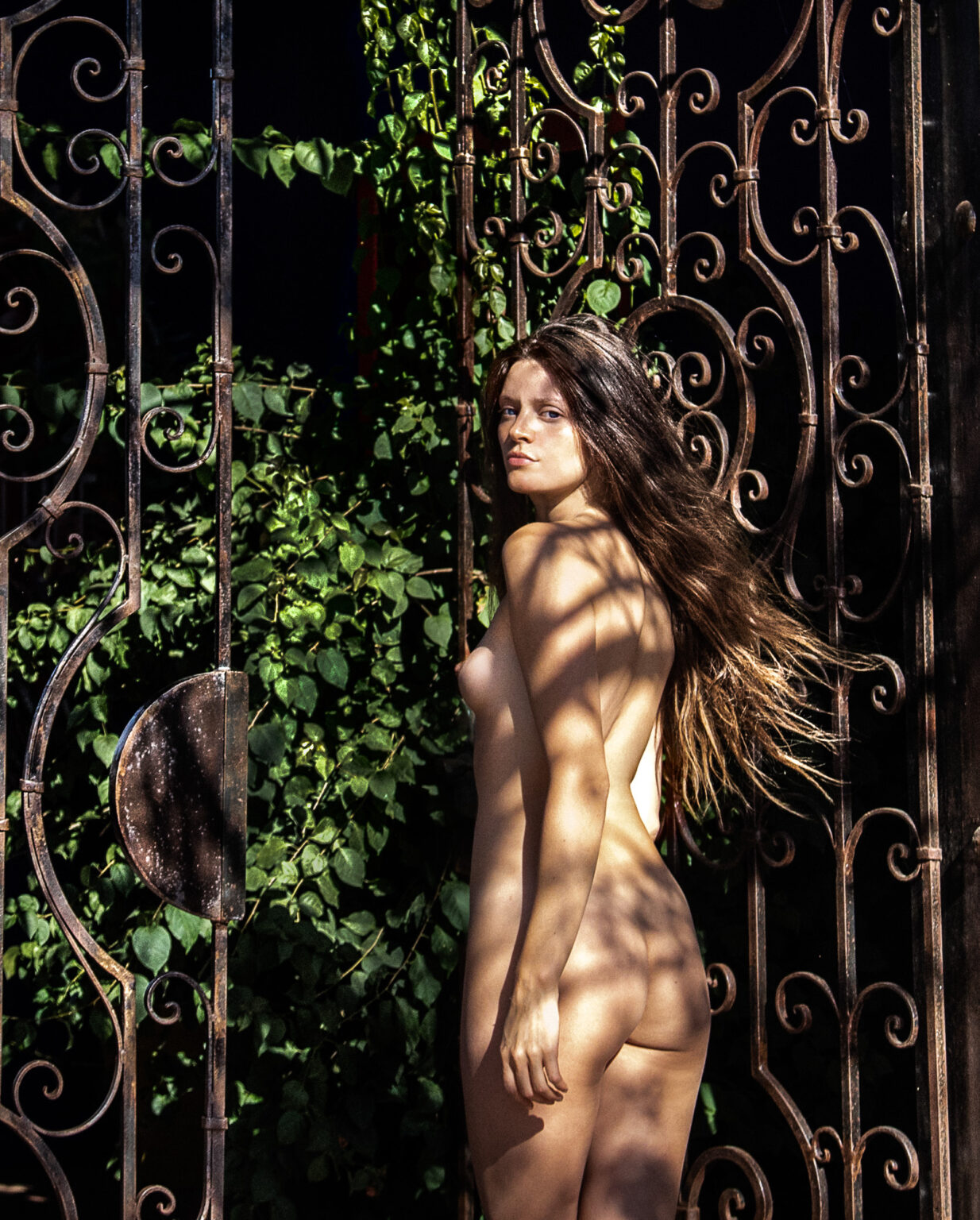 fine art nude female photographer light and shadow